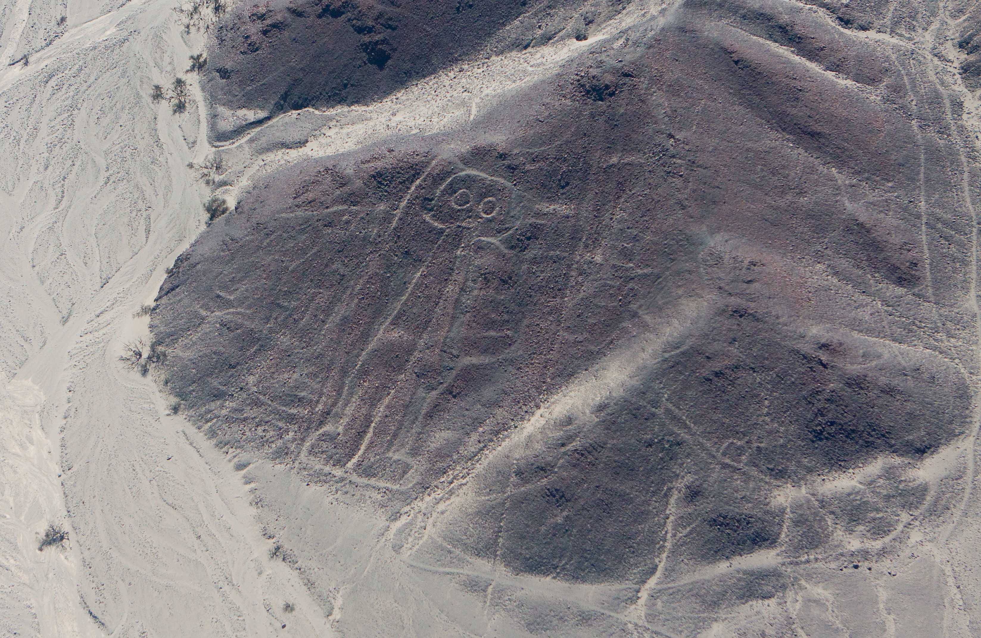 Nazca Lines Astronaut (page 4) - Pics about space