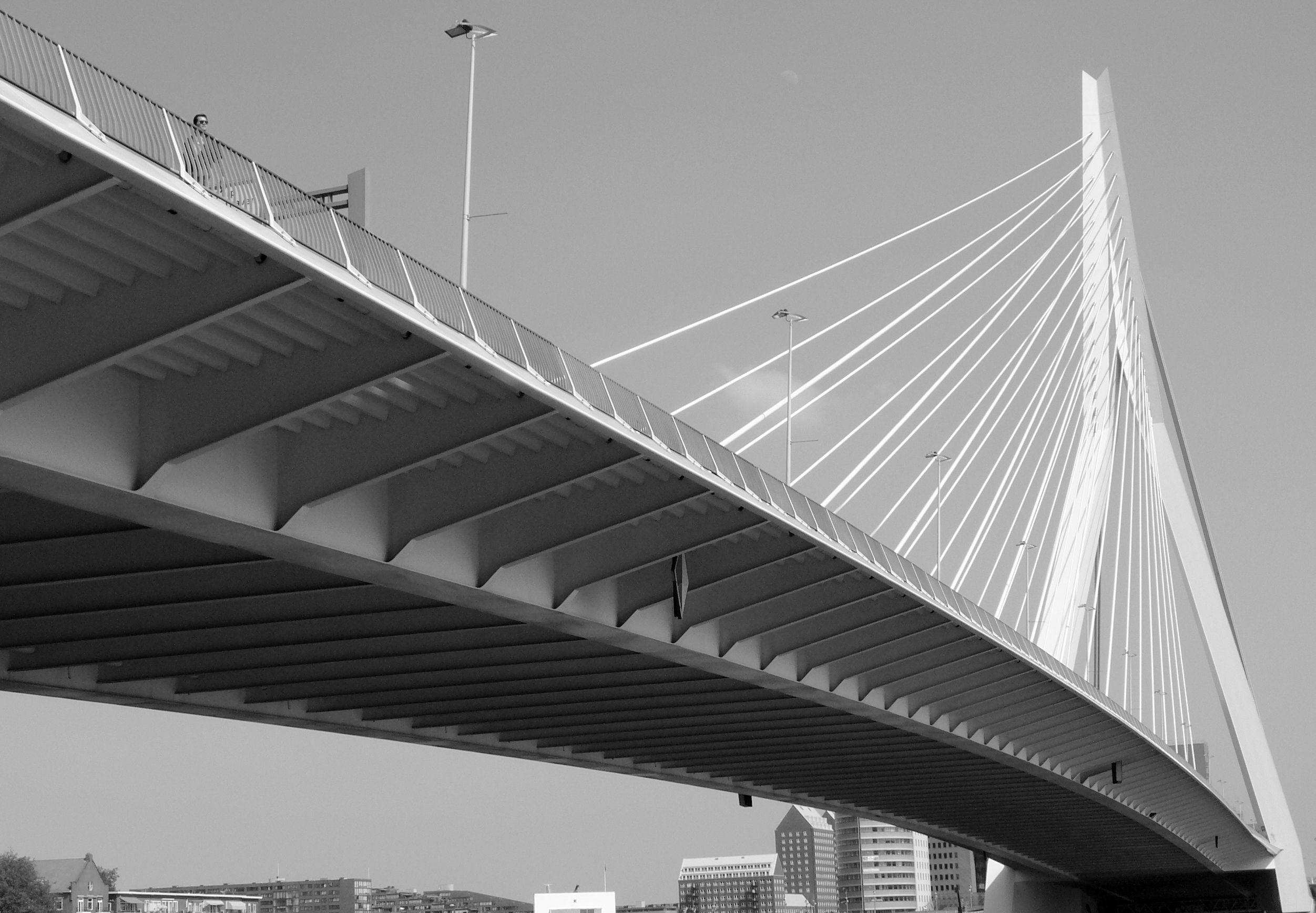 Rotterdam netherlands erasmus bridge side close view