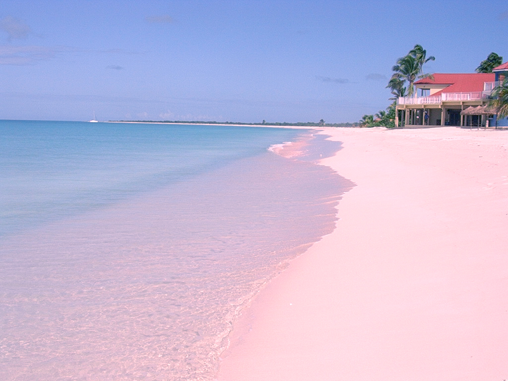 Amazing places holiday pink sands beach harbour island for Bahamas pink sand beaches