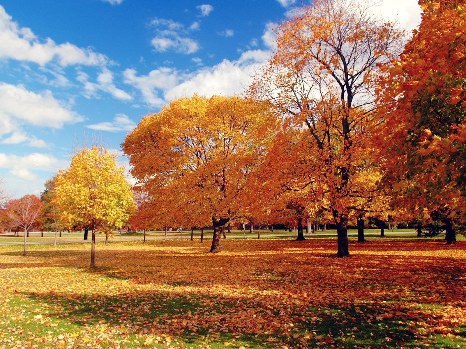 autumn_holiday_642324