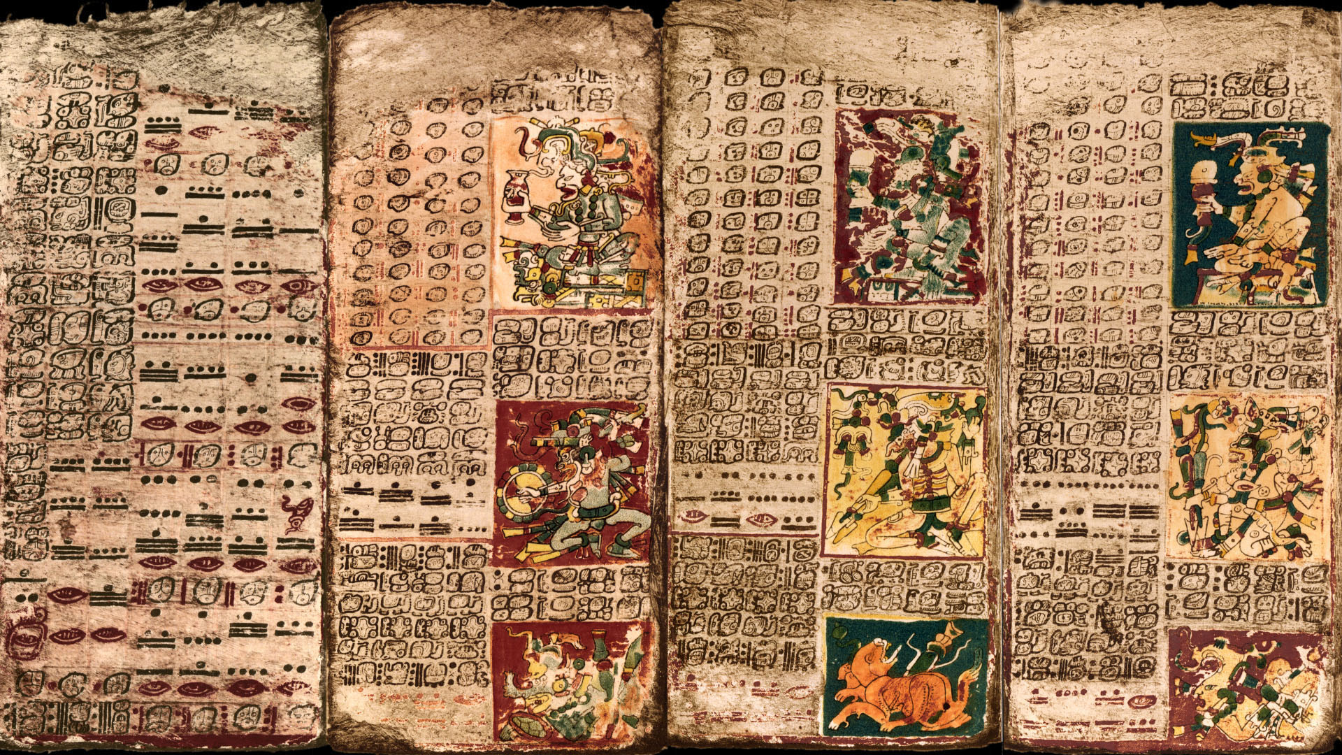 Dresden, Germany, Pages of the Dresden Codex