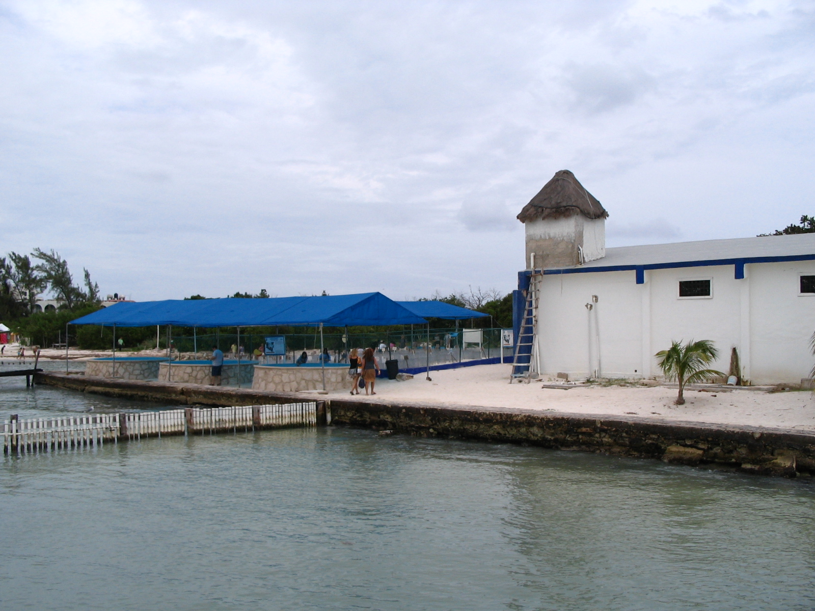 Isla Mujeres, Mexico, Sea turtle farm