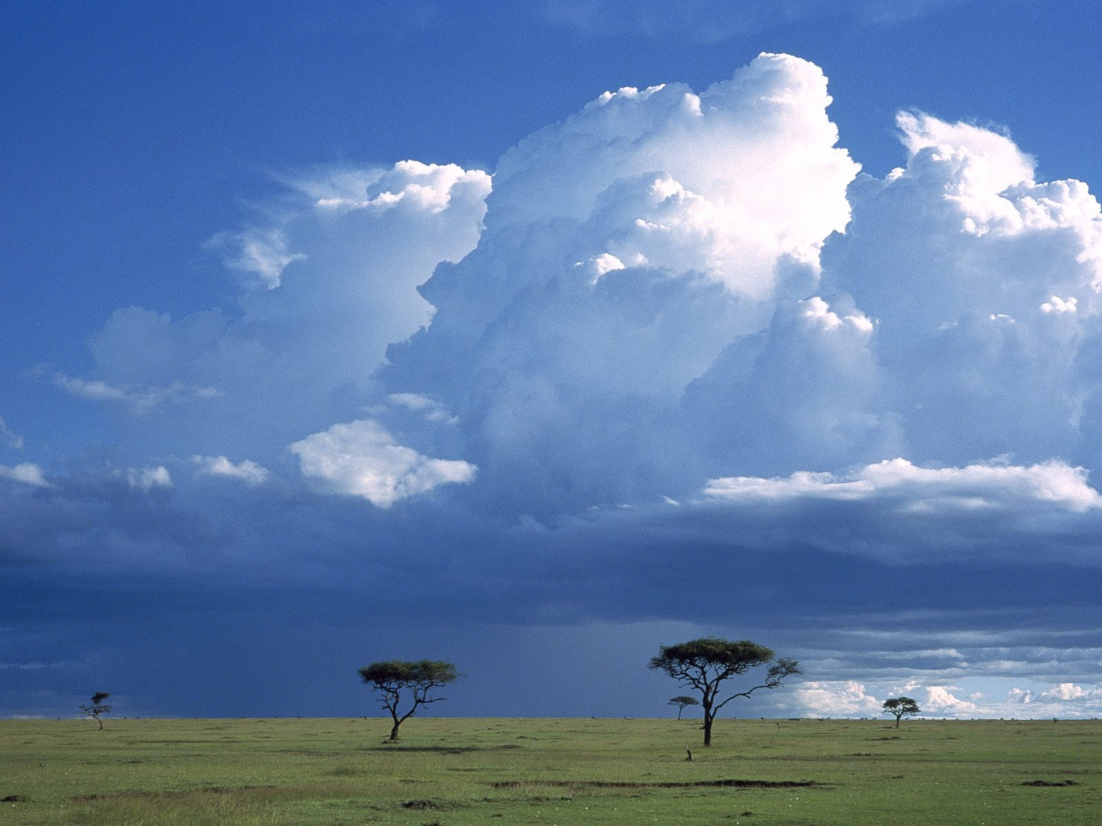 Kenya, Africa, Storm Over the Savannah