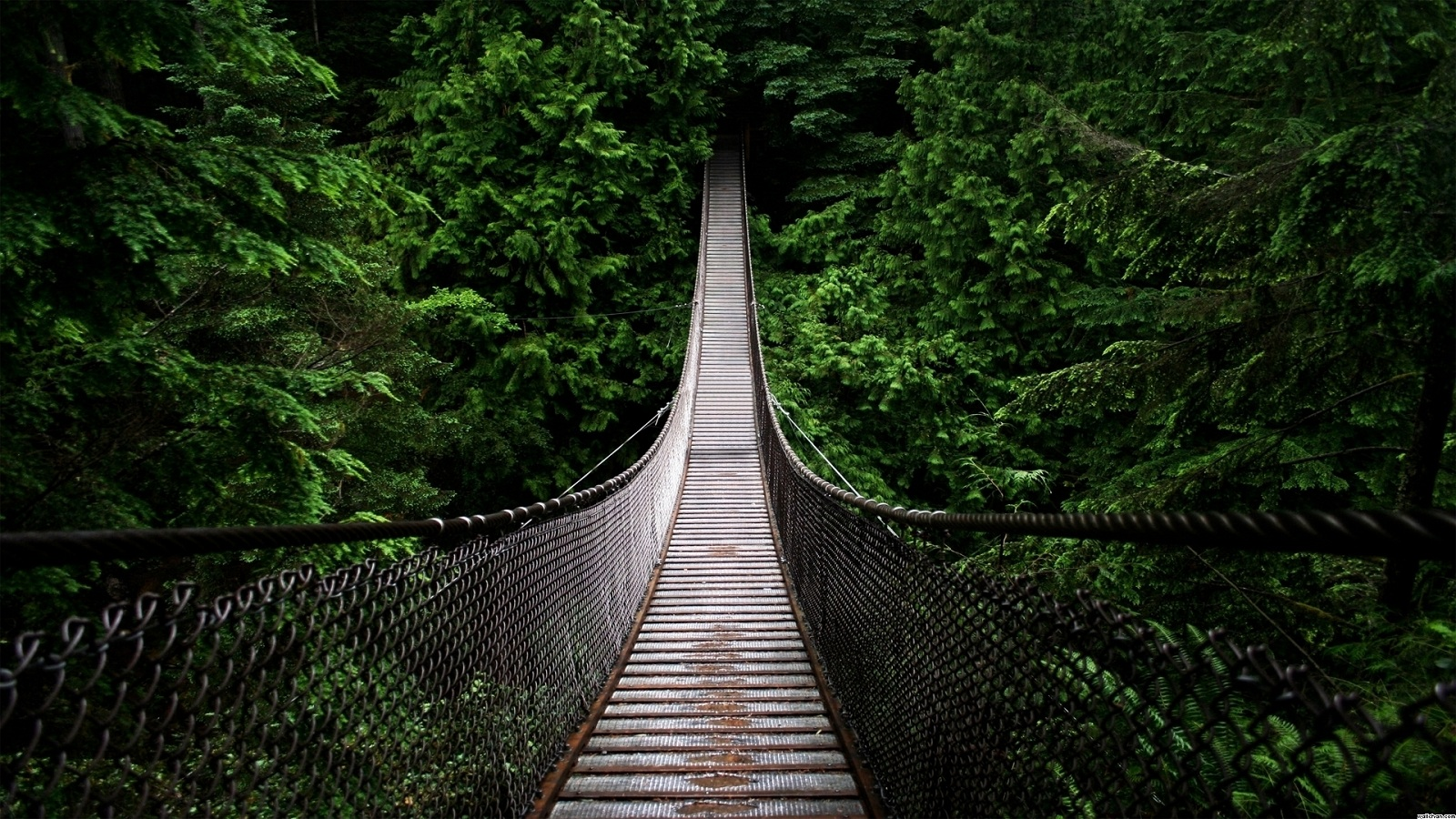 The Most Scariest Picture In The World Scariest bridges, canada