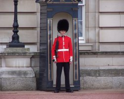 London, United Kingdom, Buckingham Palace guard