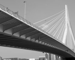 Rotterdam, Netherlands, Erasmus Bridge side close view