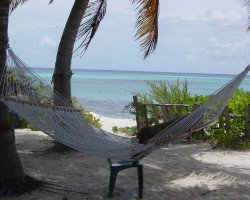 Shoal Bay, Anguilla, America, Hammock on the beach