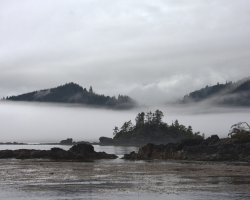 Trend Destination Holiday, Haida Gwaii, British Columbia, Canada, Under the fog