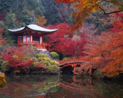 Romantic Destination, Japan, Asia, Daigo Ji Buddhist Temple
