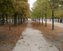 Paris, France, Autumn in city parks2