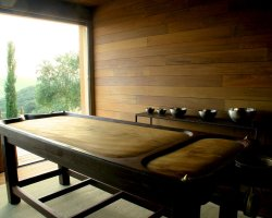 Ayurveda Holiday, Massage table