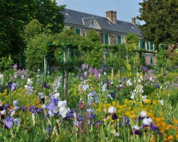 Beautiful Garden Holiday, Monets Gardens, France, Colorful scenery view