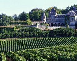 Bordeaux, France, La Riviere Fronsac vineyard