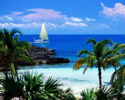 Most Visited Islands, Bahamas, Caribbean, Beach and palms