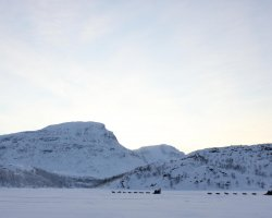 Charming Holiday, Abisko, Sweden, Dogsled
