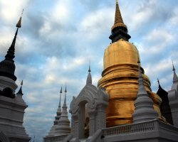 Thailand, Chiang Mai Wat Suan Dok Temple tower view