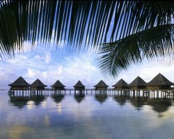 Unreal Paradise, Cook Islands, Bungalows