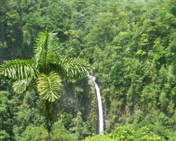 Costa Rica, America, Waterfall