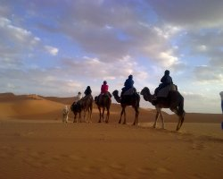 Desert Holiday, Dunes of Merzouga Camel ride