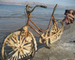 Disappointing Holiday, Dead Sea, Salted Bike