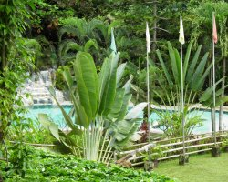 Ecotourism Holiday, Eco suites