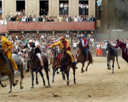 Exciting Destinations, Siena, Italy, Palio Horse Race, Racers