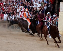 Exciting Destinations, Siena, Italy, Palio Horse Race, Racers 02
