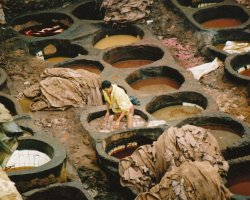 Morocco Holiday, Fes, Morocco, Tanneries close view
