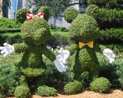 Florida, U.S.A., Disney World Minnie Mickey Bushes
