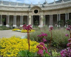 Great Museums, Paris, France, Musee des Beaux Arts, Interior garden