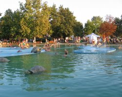 Hajduszoboszlo, Hungary, Water Park with turtles statue