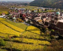 Hiking Routes, France, Europe, Alsace Wine Trail, Kaysersberg