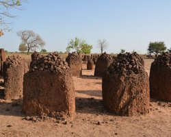 History Holiday, Senegambian Stone Circles Sine, Wassu close view