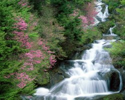 Holidays Ideas, Tochigi, Japan, Waterfall