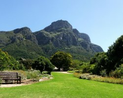Impressive Botanical Garden, Kirstenbosch, Cape Town, South Africa, View from the Botanical Gardens