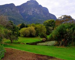 Impressive Botanical Garden, Kirstenbosch, Cape Town, South Africa, Back overview of the mountain