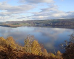 Loch Ness, Scotland, Europe, View from Abriachan Woodland