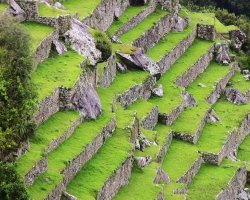 Lost Cities Attraction, Machu Picchu, Peru, Terraces