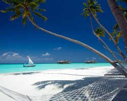 Luxury Hotels Holiday, Maldives, Asia, Gili Lankanfushi, The hammock and the beach