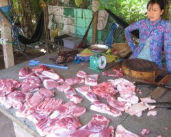 The Mekong Delta, Vietnam, Asia, Meat merchant