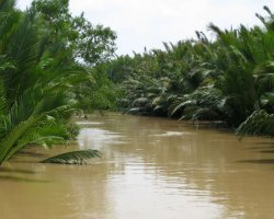 The Mekong Delta, Saigon, Vietnam, Water cannal