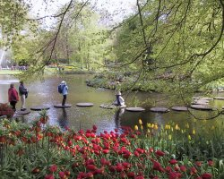 Perfect spring Holiday, The Netherlands, Keukenhof Gardens, Rocks passing the pond