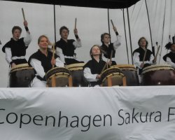 Perfect spring Holiday, Copenhagen, Sakura Festival, Drums episode front view