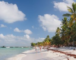 Perfect Summer Destination, Isla Saona, Dominican Republic, Sunny beach