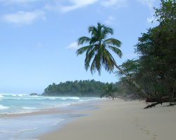 Perfect Summer Destination, Playa Grande, Dominican Republic, Surf ready waves