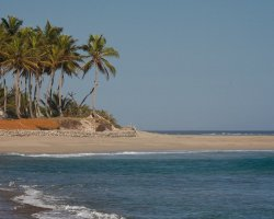 Perfect Summer Destination, Cabarete, Dominican Republic, Beach with surfing waves