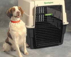 Pet Carrier Airline Approved, Portable dog crate