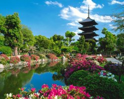 Romantic Holiday, Kyoto, Japan, Temple and garden