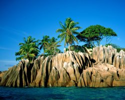 Seychelles Islands, Africa, Palms and cliffs