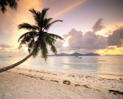 Seychelles Islands, Africa, Landscape